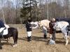 Hestene soler seg før start